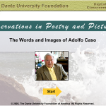 Observations in Poetry and Pictures